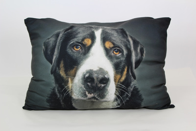 Doggie_bed-1